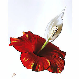 8x10 Vonflora Hibiscus Lily Oil Paint on Photo